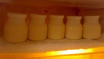 Bảo quản lạnh sữa ong chúa