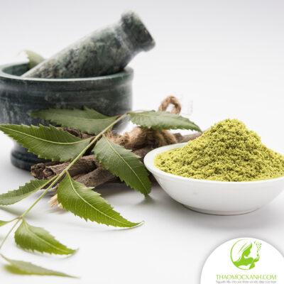 công dụng của lá neem với sức khỏe