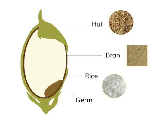 Thành phần cám gạo