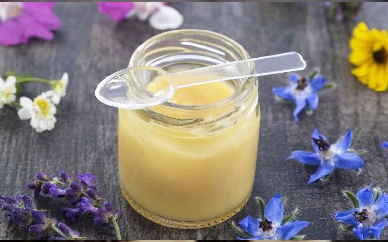 Mua sữa ong chúa ở đâu chất lượng, giá tốt?