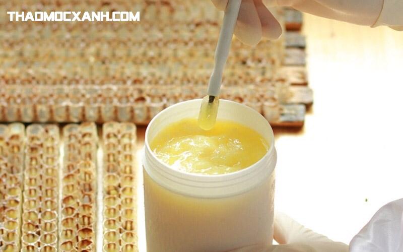 Sữa ong chúa là gì và phân biệt thật giả