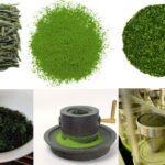 Cách pha bột trà xanh uống giảm cân