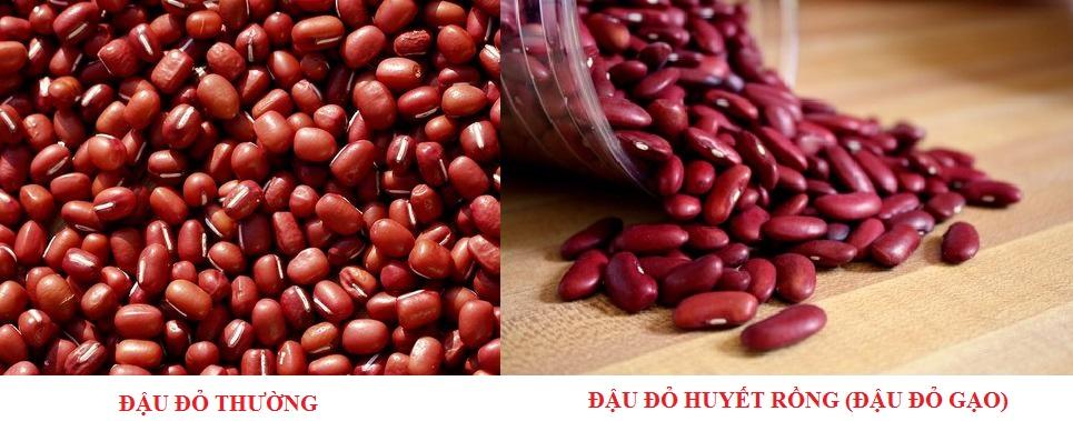 Phân biệt 2 loại đậu đỏ